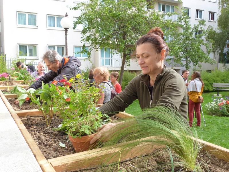 Jardins partagés Paul Eluard